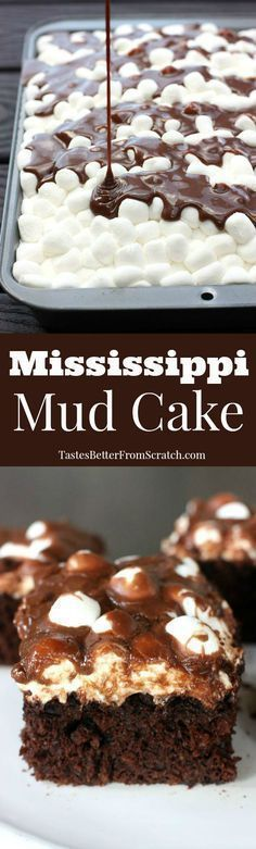 Mississippi Mud Cake Dessert Recipe via Tastes Better From Scratch --homemade chocolate cake with marshmallows and warm chocolate frosting poured on top! BEST CAKE EVER! The Best EASY Sheet Cakes Recipes - Simple and Quick Party Crowds Desserts for Holidays, Special Occasions and Family Celebrations