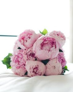 We will never, ever get over pale pink peonies. (At @Matty Chuah Ritz-Carlton Chicago (A Four Seasons Hotel))