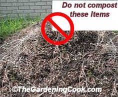 Never Compost these 12 items. I recently wrote an article which talked about a long list of weird things that you can compost which you might not think about. Today, I am doing to discuss those things you should never…Read more →