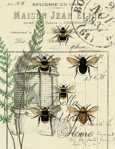 Botanical Bees and Fern Print Pillow Note Cards Original artwork created from vintage bookplates etchings 038 papers Printed in the USA on handcrafted paper Éphémères Vintage, Vintage Labels, Vintage Ephemera, Vintage Images, Vintage Prints, Vintage Artwork, Bee Images, Vintage Homes, Bee Art