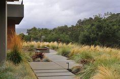 Concrete slabs form path / Sunol Landscape - Huettl Landscape Architecture