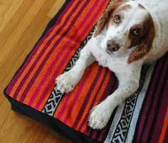 Mexican Blanket Designer Dog Bed, Pet Bed, Dog Beds, Washable Handmade Dog Bed, Dog Bed Cover, Pet Bedding, pink and orange dog bed