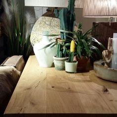 At our store. Cactus lover. Botanical trend. Lijnm.com