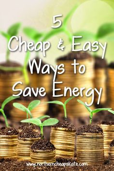 Five simple things you can do around the house this summer to help reduce your energy usage and save money.
