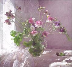 Photoart by Irina Ionova