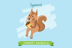 Squirrel Vector, forest animals. by studioworkstock on @creativework247