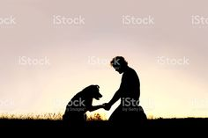 Silhouette of Man Shaking Hands with his Loyal Pet Dog foto royalty-free