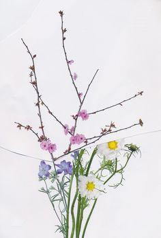 Plants, Art, Art Background, Kunst, Plant, Performing Arts, Planets, Art Education Resources, Artworks