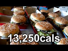 WORLD RECORD: Guy 25 Big Macs in 22 minutes. [MATH: rates (bites per burger, bites per minute, calories per burger, etc.); if he burns 300 cal/hour jogging, how many hours does he have to jog to burn off all the Big Macs?]