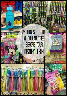 25 Things To Buy At Dollar Tree BEFORE Your Disney Trip is part of Disney trip planning - 25 Things To Buy At Dollar Tree BEFORE Your Disney Trip Whether you plan on visiting Disneyland or Disney World my money saving tips for your summer va Voyage Disney World, Viaje A Disney World, Disney World Tipps, Disney World 2017, Disney World Tips And Tricks, Disney Tips, Disney World Hacks, Disney Ideas, Disney Worlds