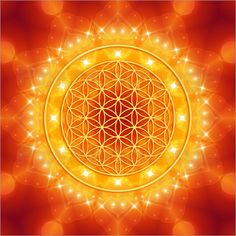 Wandbild von Dolphins DreamDesign - Blume des Lebens - Goldene LichtEnergie