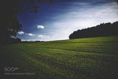 field by milekmaciek. @go4fotos