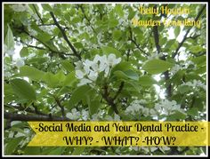 Social Media and your Dental Practice ~ Hayden Consulting is ready to help you manage your social media sites.