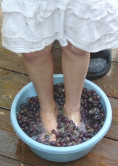 Making our own wine - the old-fashioned way - from our home-grown Concord grapes, Rehovot, Israel. Grapes, holy sites, the best time in Israel - contact us for a private tour.