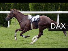 #DAX MORGENANALYSE zum Donnerstag, den 23.03.2017 mit DrMartin Kawumm  Und check, das nächste Ziel ist abgearbeitet. Hier sollte man darauf achten, nicht vom Pferd geworfen zu werden um die neue Trendphase auch angemessen auszukosten.  Zum Video: https://www.welovetrading.de/community/fan-seiten/seiten/209-money-monkeys/Videos/631-dax-analyse-23-03-2017   +++ FAN-Seite liken und Benachrichtigung bei neuen Beiträgen erhalten +++   Beste Grüße & Happy Trading