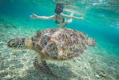 snorkelen gili eilanden