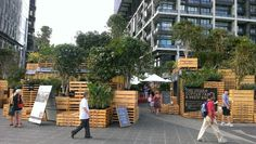 The urban coffee farm, Melbourne food and wine festival.