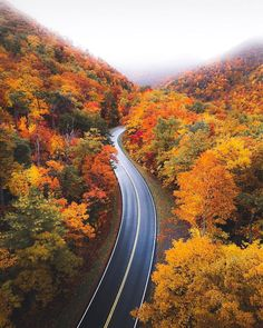 Image may contain: tree, sky, plant, outdoor and nature Beautiful Roads, Autumn Scenes, Autumn Aesthetic, Autumn Photography, Road Photography, Digital Photography, Fall Pictures, Nature Images, Instagram
