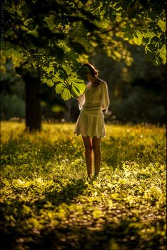 Thou art gone from my gaze like a beautiful dream, And I seek thee in vain by the meadow and stream. •  George Linley.  Photo uncredited.