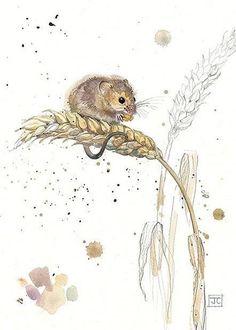 Harvest Mouse by Jane Crowther, Bug Art Animal Paintings, Animal Drawings, Art Drawings, Watercolor Animals, Watercolor Paintings, Watercolours, Mouse Illustration, Art Aquarelle, Bug Art