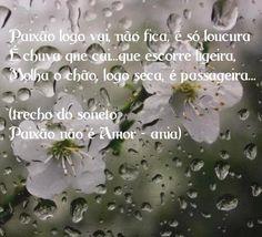 trecho do soneto Paixão não é Amor...