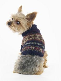 Fair Isle Dog Sweater - Ralph Lauren Home For the Pet - RalphLauren.com