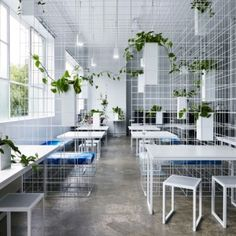 Sibling installs wireframe matrix in Squint/Opera's Melbourne office