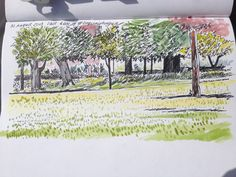 Jean a drawing a day Classroom Projects, Outdoor Classroom, Flora And Fauna, Explore, Park, History, Drawings, Painting, Sketches