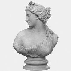 Aphrodite Kallipygos Bust Aphrodite, Animation, Sculpture, Statue, Georgian, Regency, Model, Tattoo, Interior Design
