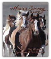"""Your 2014 Horse Savvy Day planner Measures 5 3/8"""" x 8"""" closed and displays a flat, Satin Finish writing surface measuring 11 x 8"""" high. Your planner opens with a full 12-month year-at-a-glance 2014 calendar, which is followed by 53 weekly spreads, completed with the Equine Health Planning Records bonus pages and finishes with a 2015 year-at-a-glance. $29.95"""