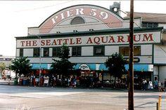 Seattle Aquarium on Pier 55. Seattle, Wa. I love this place.