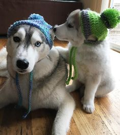 "Fin's like : ""he's not staying right?! And why are we wearing these ridiculous beanies?!"""