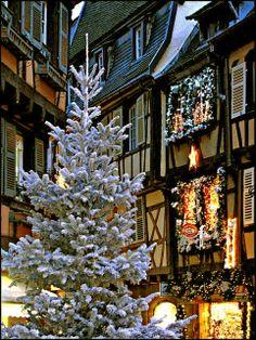 Christmas ~ Colmar ~ France