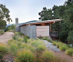 "sesleria & muhlenbergia grasses: from ""Landprints: the Landscape Designs of Bernard Trainor"""