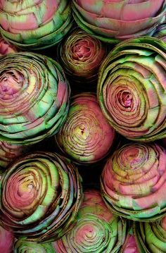 Pink and Green ~ Artichokes