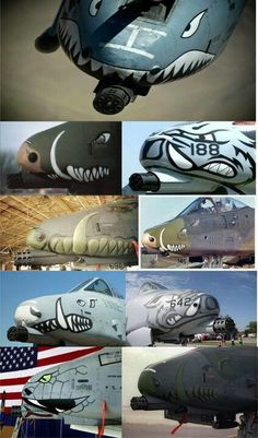 A-10, different 'face' decals, all of them are neat.