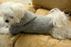 SOFORT lieferbar Hund Kapuzenpullover grau Haustier Kleidung
