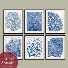 Underwater Sea Coral Collection (Series D) Set of 6 - 8x10 Art Prints - Featured in Soft Cream and Hotel Towel