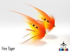 Image result for orange chartreuse salmon fly