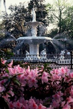 We visit Savannah, GA once a year. Great place for weekend getaway. Visit Savannah, Savannah Georgia, Savannah Chat, Historic Savannah, Downtown Savannah, Georgia Usa, Oh The Places You'll Go, Places To Travel, Places To Visit