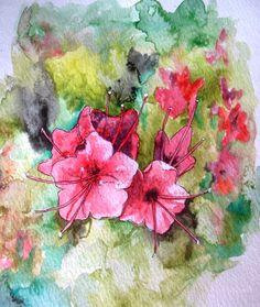 Día 4 reto #DibujoDiario: Flor de tajinaste rojo. #Canarias