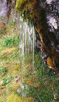 El congelamiento de las pequeñas corrientes de agua da origen a agujas de hielo o carámbanos en las primeras horas de la mañana.