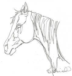 Horse Head Continuous Line Drawing -- Debbie Grayson Lincoln