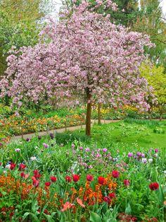 Teatime Journeys: Day 8- Monet's Garden