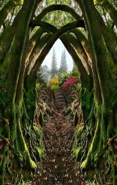 Entrance to the Secret Garden, Portland, Oregon