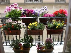 Mein geblühter Balkon – Aysen Karanis - All About Balcony Balcony Planters, Small Balcony Garden, Balcony Flowers, Terrace Garden, Meditation Garden, Pot Jardin, Small Outdoor Spaces, Balcony Furniture, House Plants Decor