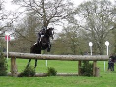 Vittoria Panizzon and Rock Model - riding the beautiful Rock Model at Chatsworth horse trials - photo@Lorraine Porter