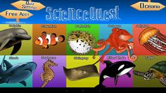 "Science Quest - Sixth Grade is a ""Ten Year Series"" collection of high quality Grade 6 Science questions crafted for the sixth graders. It differs from the traditional collection of Ten Year Series questions as it is infused with learning pedagogy to engage the learner and accelerate his assimilation. Science Quest is designed by educators to allow the young learner to be motivated in learning and enjoys solving Science problems.   28MB"