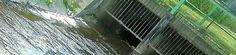 Kania wpływa do kanałów oczyszczalni(PRZY SZPITALNYM LABORATORIUM) ścieków.