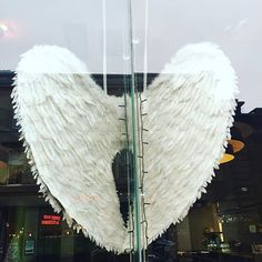 When an Angel finds its wings...